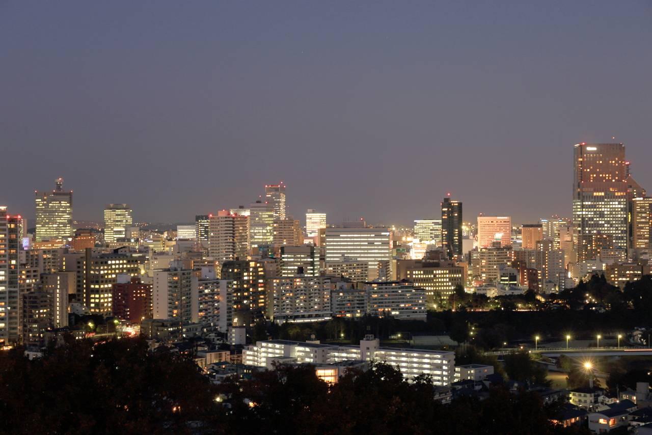 仙台城趾からの夜景