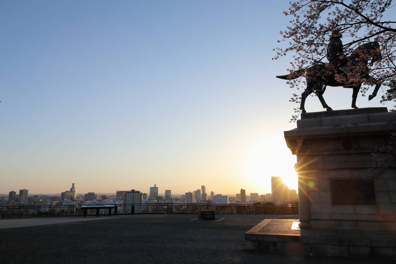 仙台城跡からの朝日と桜