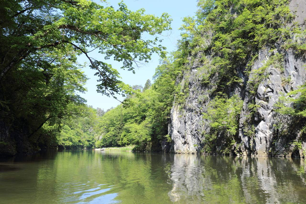 猊鼻渓(げいびけい)の新緑と藤見ながら舟下り