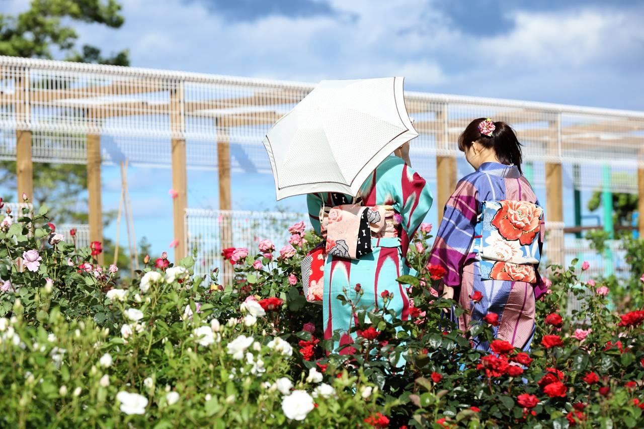仙台 農業園芸センターのバラまつり
